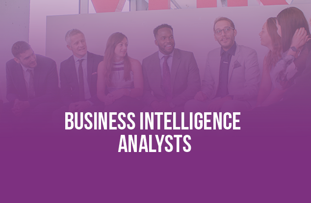 Business Intelligence Analysts